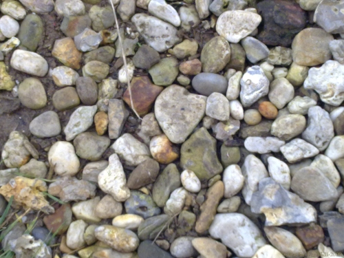 Heart blends with Nature 2 by Aatos Beck © 03-11-2009